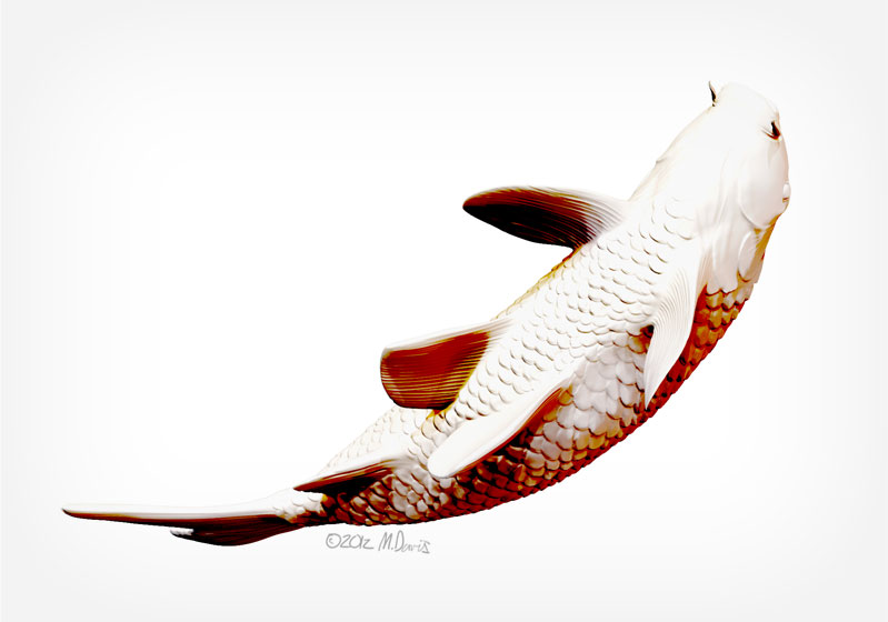 Zbrush koi study bottom view by Michelle Davis