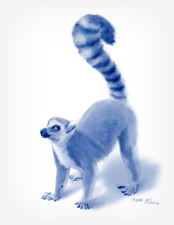 Standing Lemur Sketch by Michelle Davis
