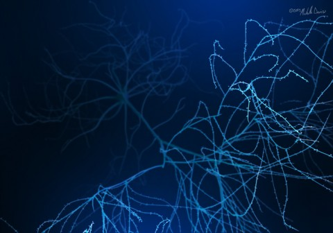 image of pyramidal neuron model in zbrush by michelle davis