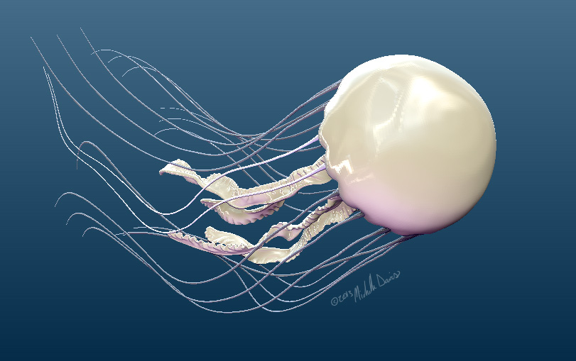 image of posed view of jellyfish 1 by michelle davis