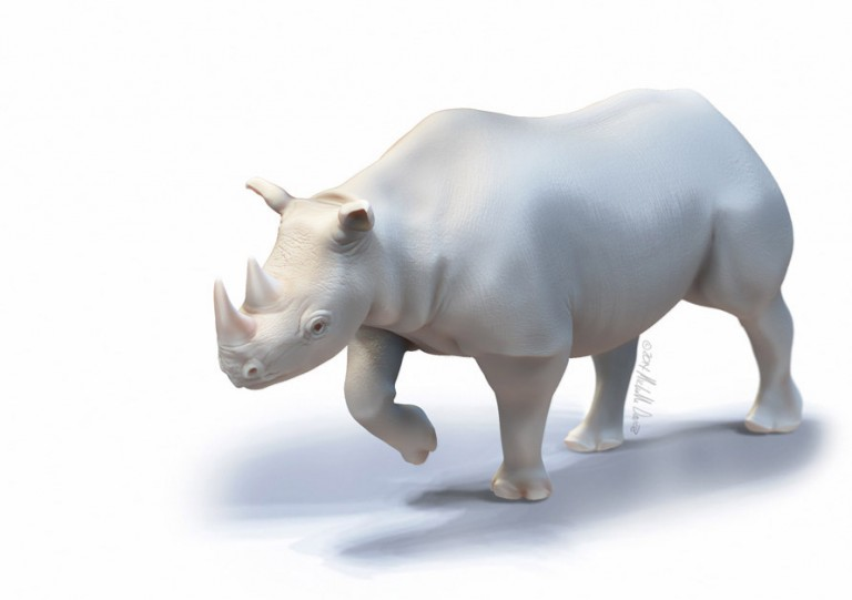 Black Rhino Sculpt in Zbrush